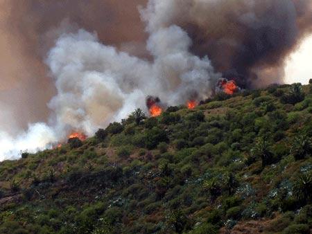 La Gomera Feuer