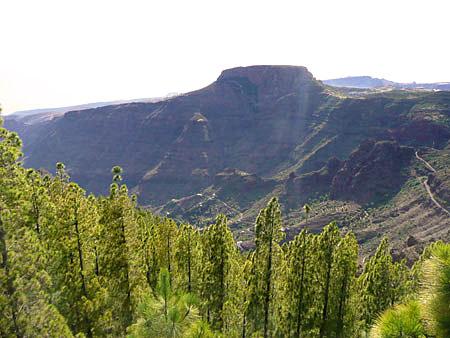 Vallehermoso, Gomera beim Wandern entdecken