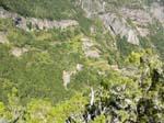 Nationalpark Garajonay